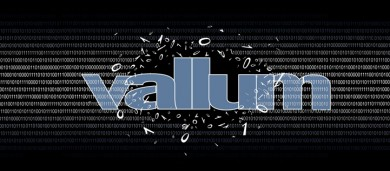 About Vallum Software